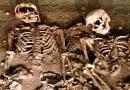 скелети