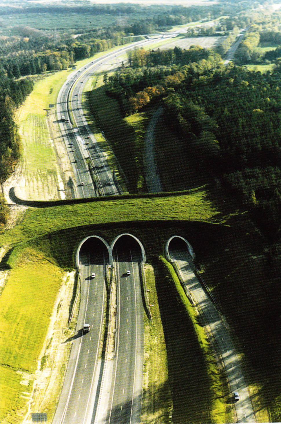 мост 12