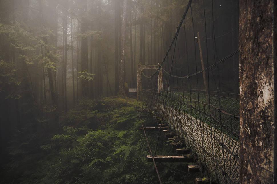 мост 5
