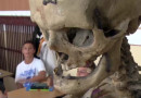 VID: Skeleton Teaching Staff Back on Duty At Romanian School