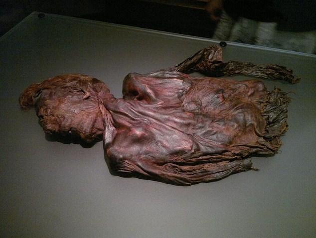"""Това е мумията на Човека от Клоникаван (Ирландия) и е датирана на около 2300 години. Черепът му почти се е разтворил в киселата блатна среда, но въпреки това учените са открили върху косата му своеобразен """"гел"""". Изследователите са успели да пресъздадат неговия облик и поради особеностите на външния му вид дори са нарекли мумията """"Дейвид Бекъм"""". Човекът от Клоникаван е бил принесен в жертва. Снимка: Mark Healey/Flickr"""