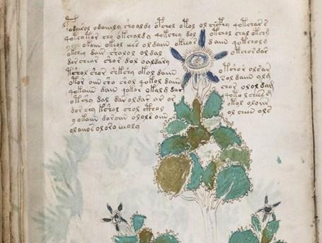 НЕЗЕМНИ: Растенията в книгата нямат аналог на Земята.