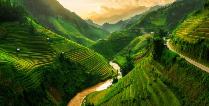 Оризовите тераси